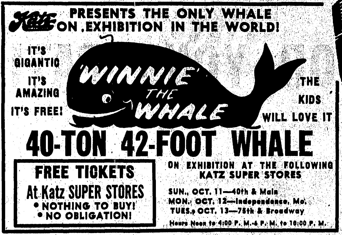 Newspaper advertisement for Winnie the whale, The Kansas City Times, October 11, 1953.