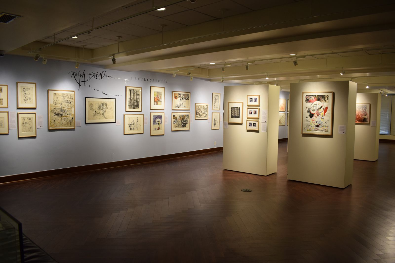Steadman Exhibit - Mountain Gallery