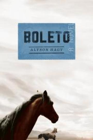 Boleto book cover